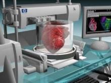 3D-принтер напечатает человеческое сердце