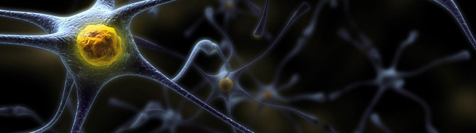 3D-принтер поможет восстановить поврежденные нервы