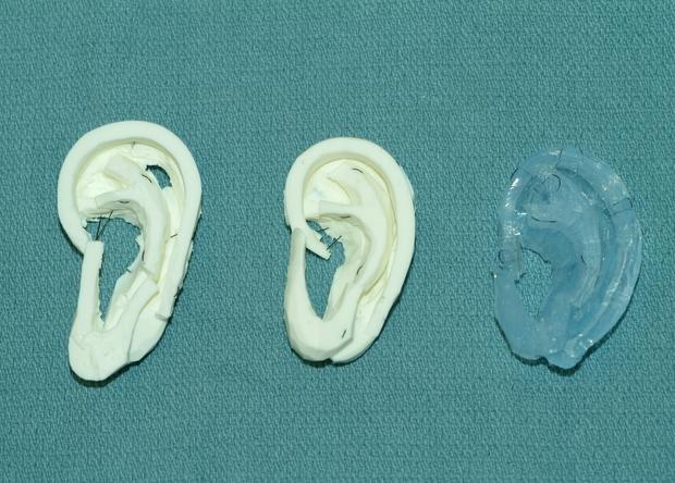 3D-технология позволила напечатать уши для тренировок врачей