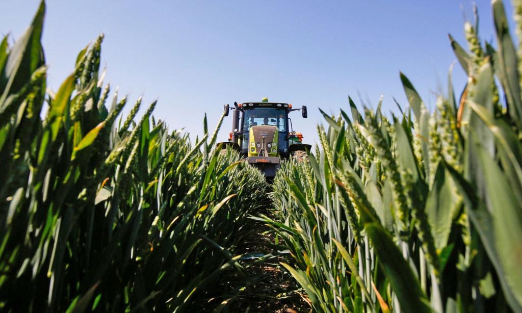 Австралийские роботы-фермеры учатся собирать урожай