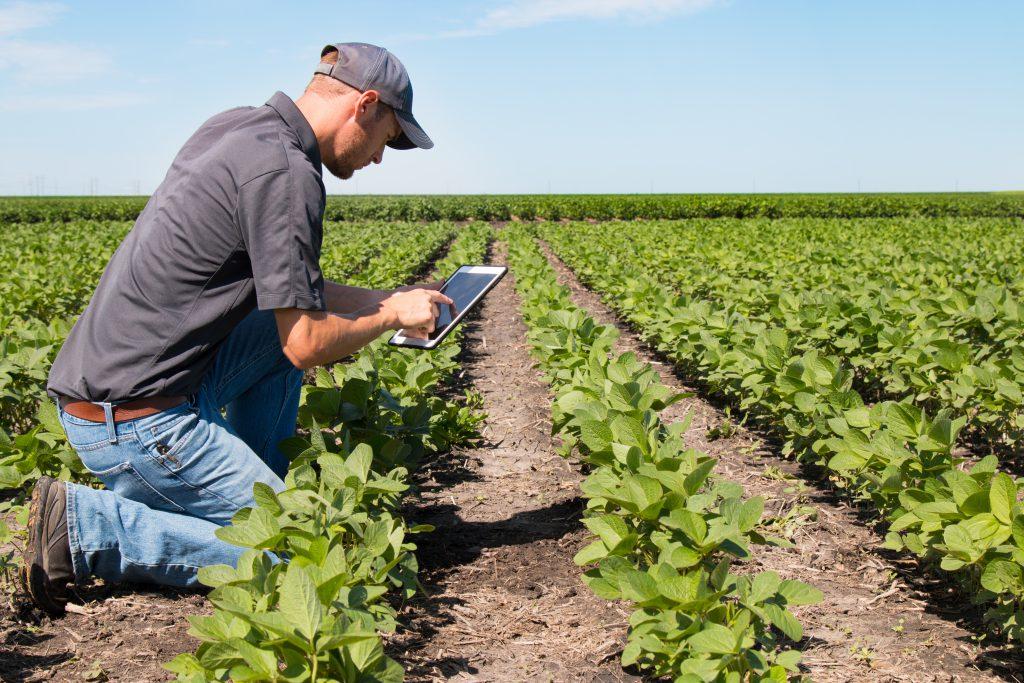 Битва за урожай: как Интернет вещей помогает прокормить человечество. Часть 1