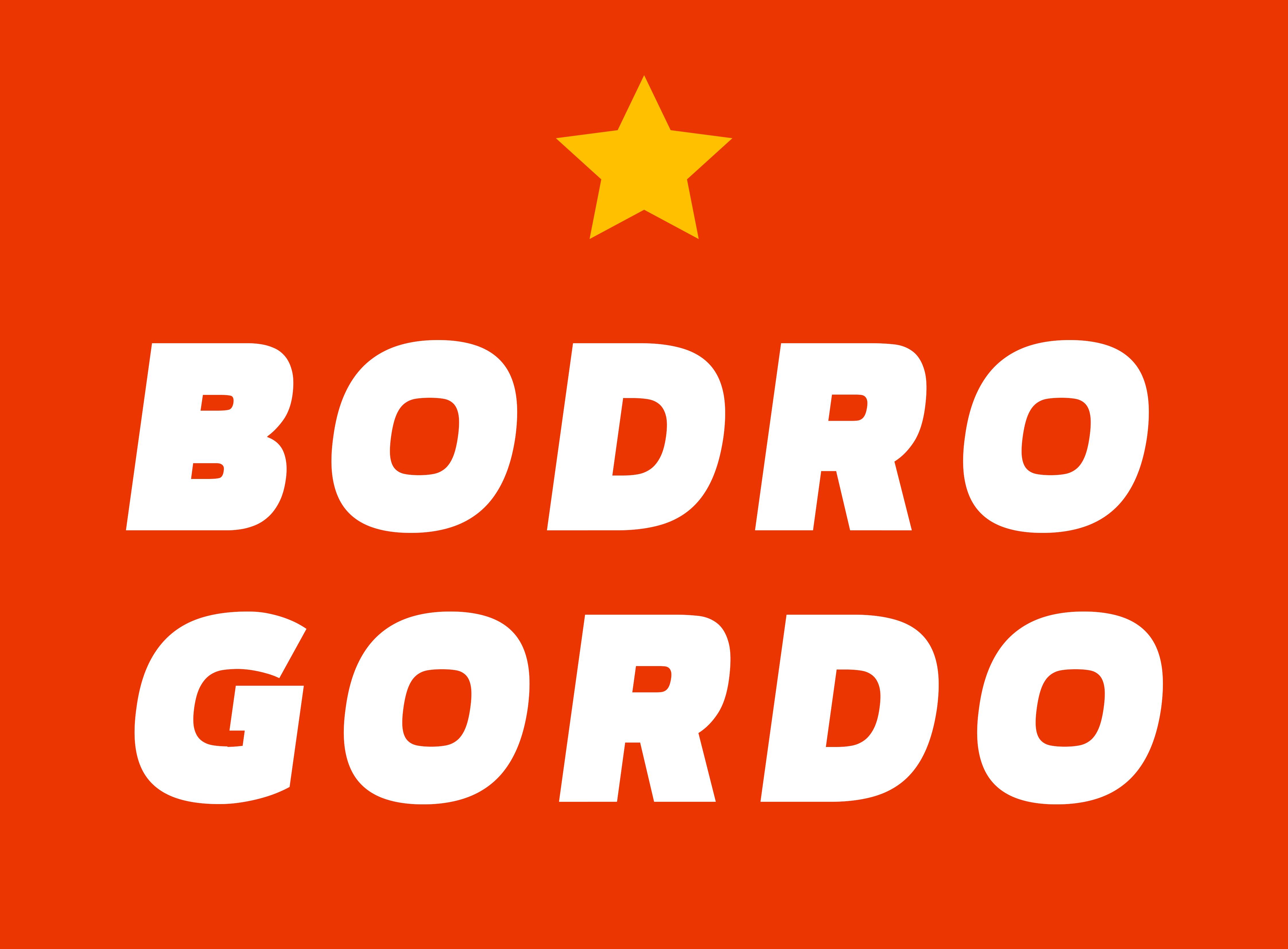 Бодро и Гордо на RACE2014!