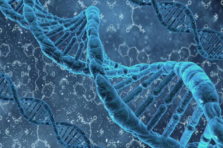 Deep Genomics использует машинное обучение для лечения генетических болезней