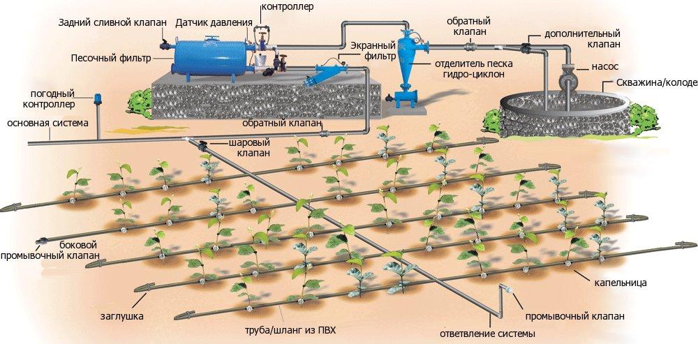 Инновационные тренды сельского хозяйства