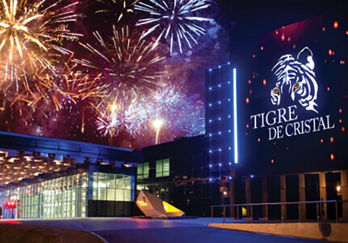 Доход государства от Tigre de Cristal составил 500 млн рублей