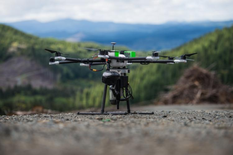 DroneSeed будет использовать дроны для высадки деревьев
