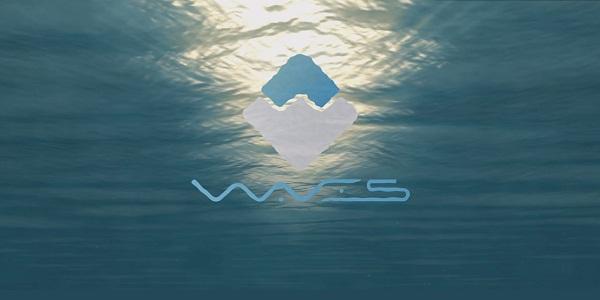 Финтех-стартап Waves Platform провёл одно из крупнейших ICO
