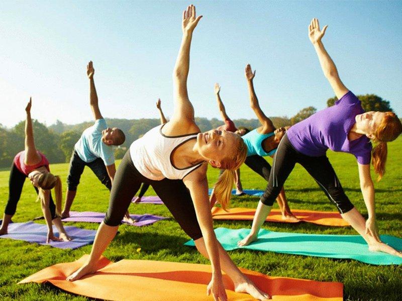 Физкультура и спорт: улучшение здоровья или карьера спортсмена?