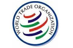 Гендиректор ВТО: Казахстан станет лучшим в мире местом для вложения инвестиций