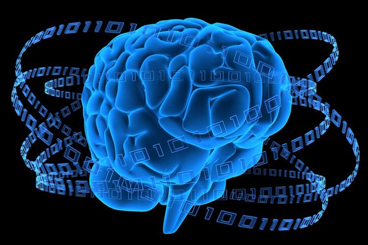 Глава AI-подразделения Intel предрекает бурное развитие искусственного интеллекта в ближайшие 5 лет
