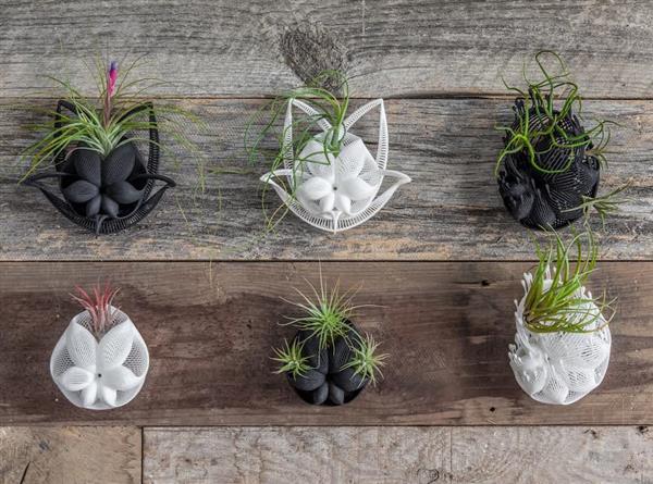 Художник создает великолепные декорации из растений на 3D-принтере