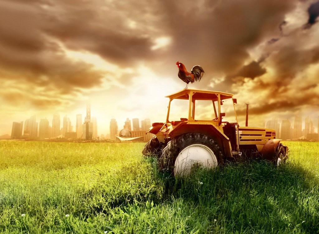 IoT-технологии в сельском хозяйстве поднимут российский ВВП на 5,6%