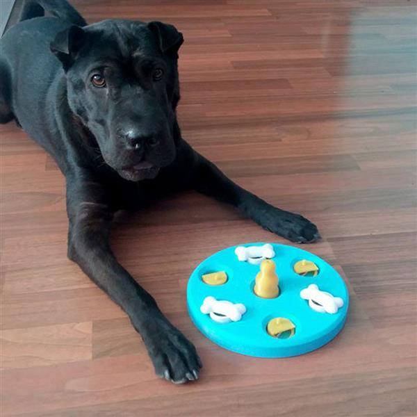 Испанский дизайнер изготовил 3D-печатную игрушку для собак, чтобы помочь стимулировать развитие интеллекта своего любимца