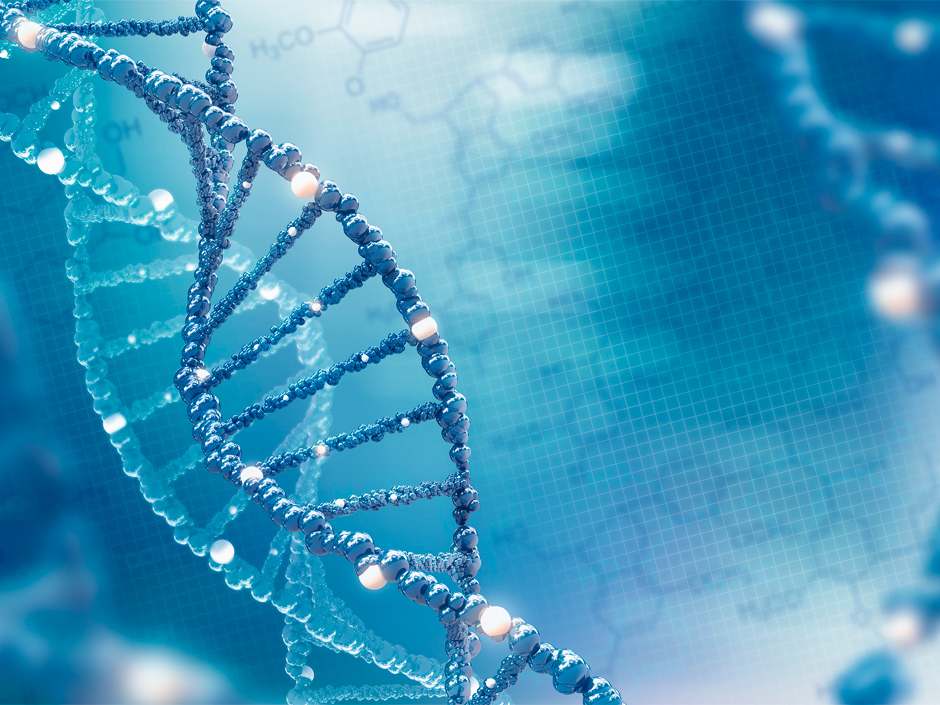 Analyze your life through genes, or What can a genetic test tell about you