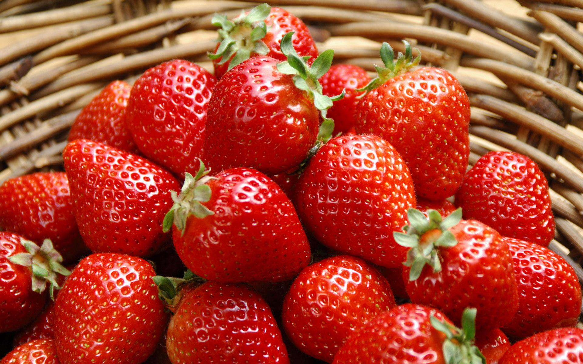 Hydroponic strawberries: how to grow them at home