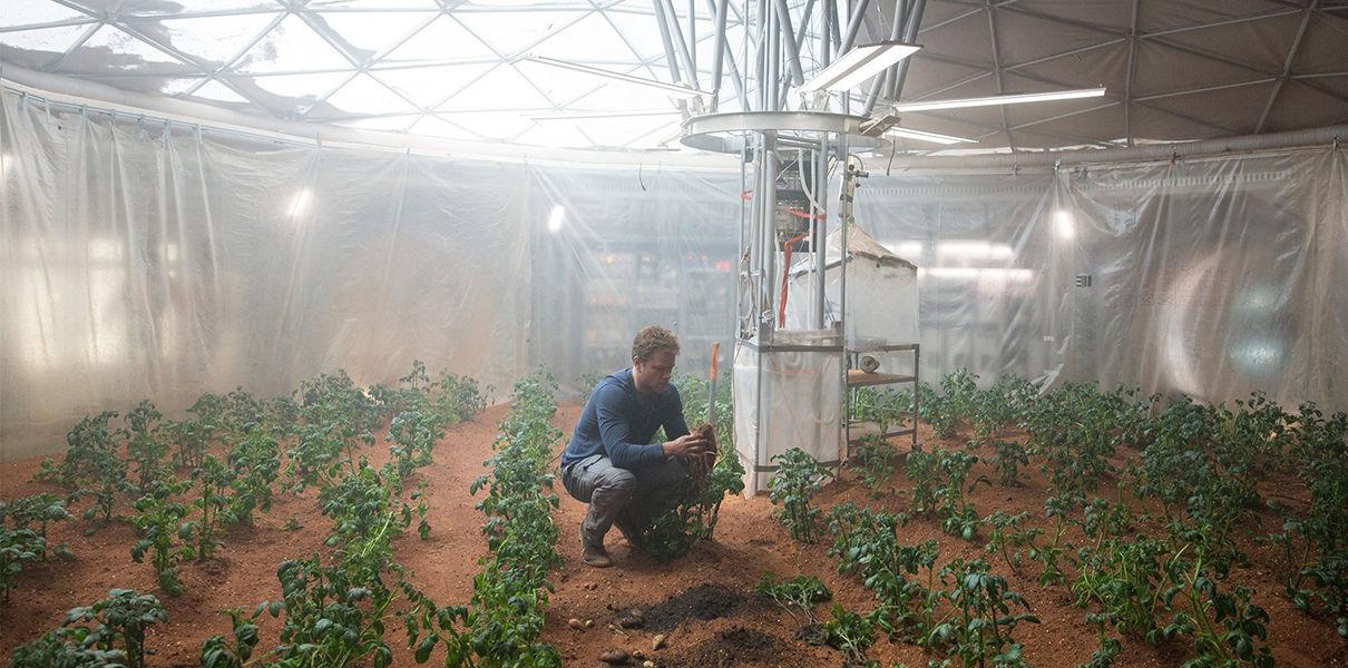 NASA разрабатывает метод выращивания еды на Марсе
