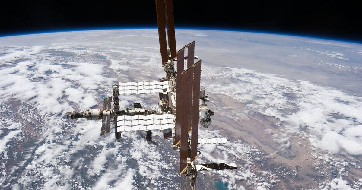 ОРКК планирует отправить в космос 3D-биопринтер