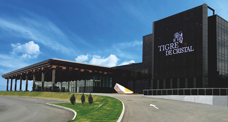 Первое казино в Приморье принесло бюджету края 494,8 млн