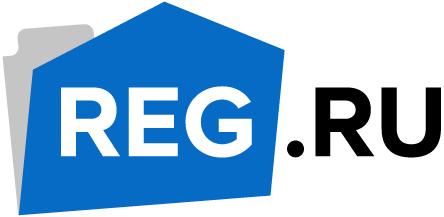 REG.RU станет информационным партнером RACE 2015