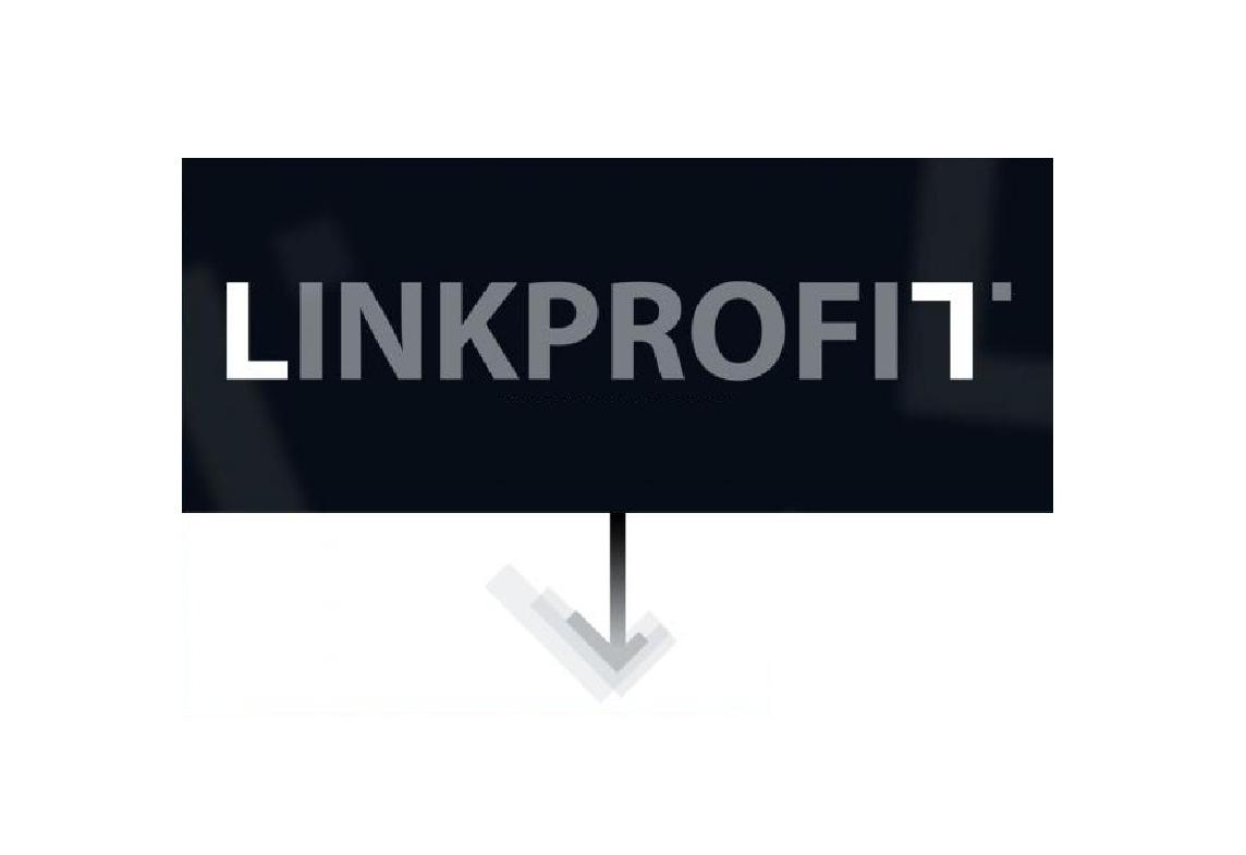 Рекламная сеть LINKPROFIT – на RACE