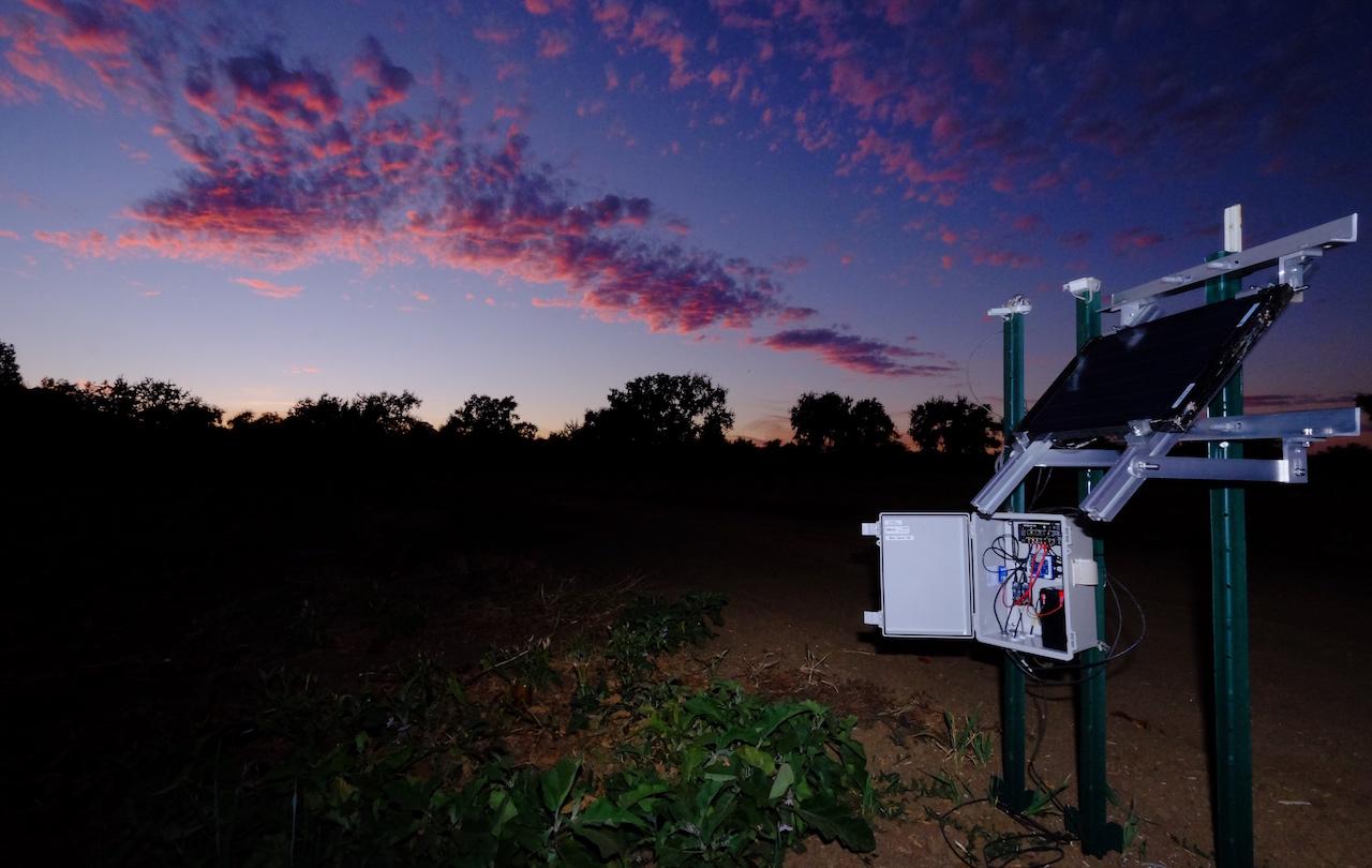 Российские фермеры контролируют состояние посевов с помощью платформы Sensor Hub