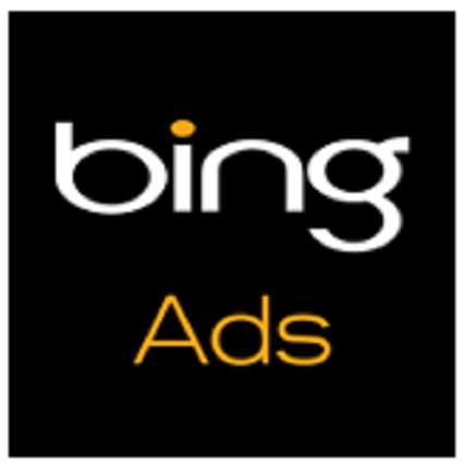 Самые популярные поисковые запросы в Bing в этом году