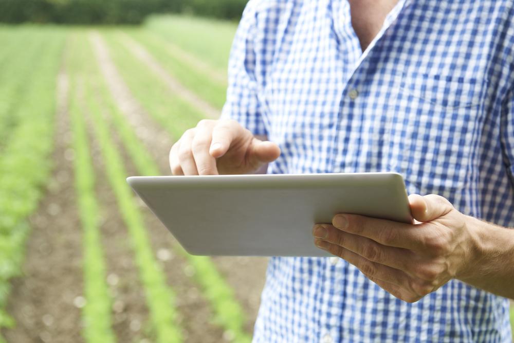 Сенсоры для сельского хозяйства: что они умеют