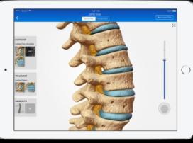 5 приложений, которые помогут студентам-медикам учиться лучше
