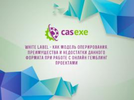 CASEXE подвела итоги вебинара, посвященного White Label