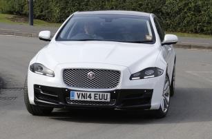 Jaguar следит за вашим вниманием