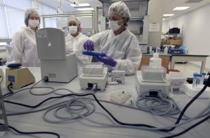 Вчені MIT розробили мову програмування клітин живого тіла