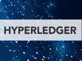 Hyperledger – 8 new participants