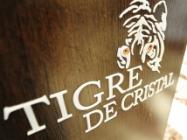 Первый год работы казино Tigre de Cristal принес государству 448 млн рублей
