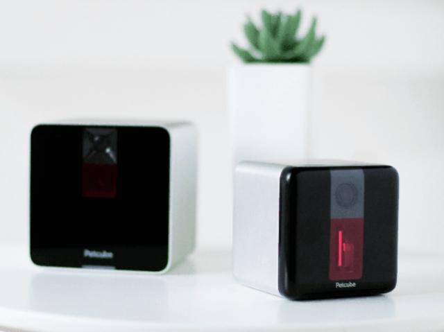 10 млн доларів інвестицій на нові пристрої для домашніх улюбленців