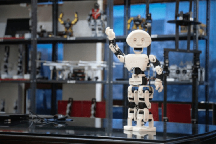 3D-печатный гуманоидный робот MANAV индийской разработки