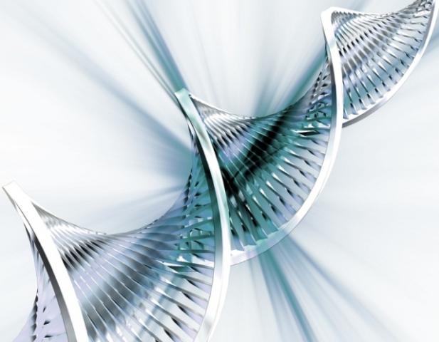 Биотехнологии позволили создать робота из ДНК