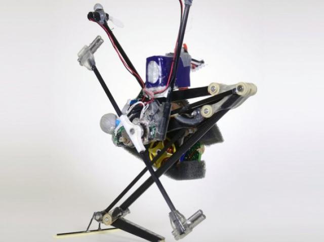 Быстрее, выше, сильнее: робот-паркурщик Salto «научился» новым техникам