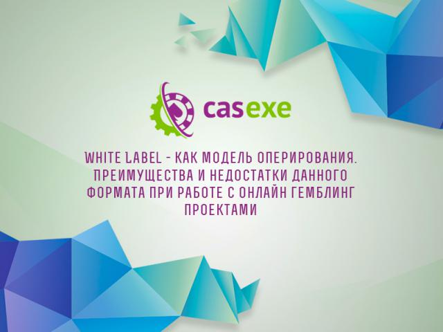 CASEXE подвела итоги вебинара, посвященного White Label
