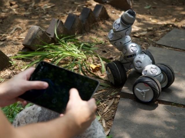 CellRobot – новые формы каждый день