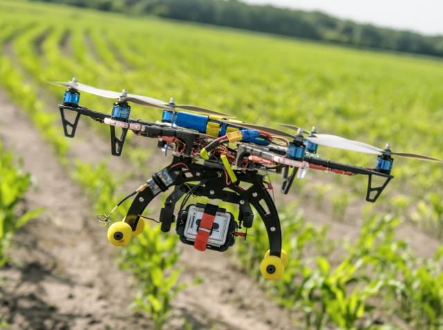 Для чого потрібні дрони в сільському господарстві: 6 способів застосування