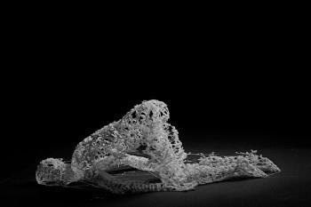 Для изучения смерти художник использует 3D-печать