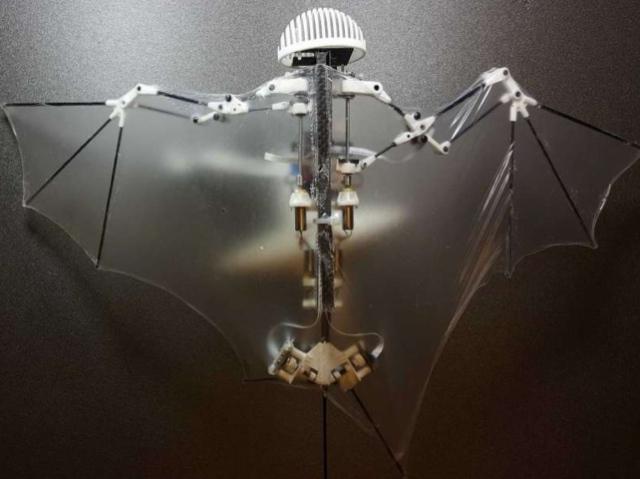 Дрон–летучая мышь. Бэтмен одобряет