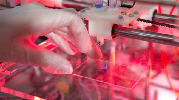 Прорыв в технологиях 3D-печати стволовых клеток