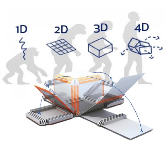Развитие не остановить: изобретена 4D-печать