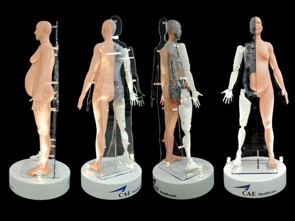 Робот—симулятор родов был разработан CAE и Stratasys