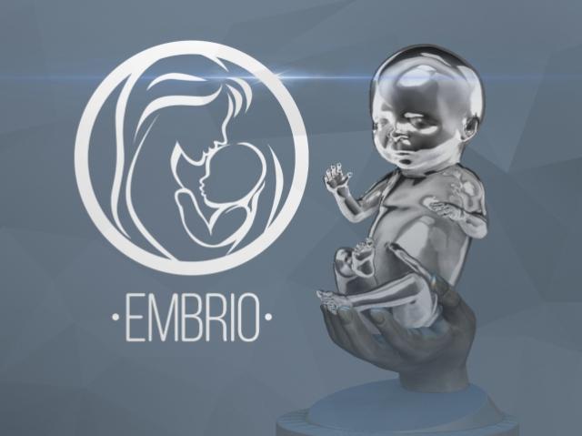Российский стартап печатает эмбрионов на основе снимков 3D-УЗИ