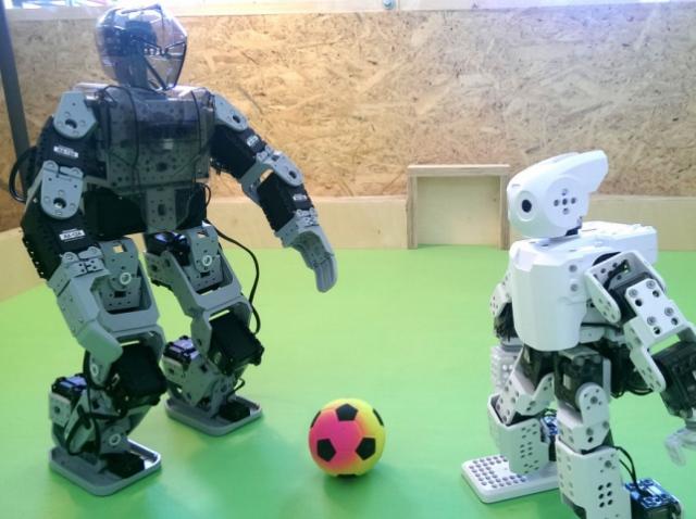 Самые популярные роботехнические конструкторы