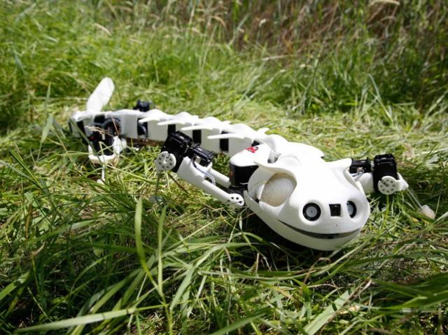 Швейцарские учёные создали 3D-печатную роботизированную саламандру