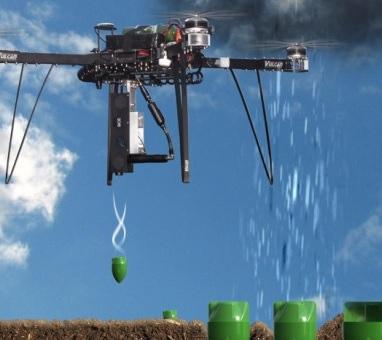 Смогут ли дроны садить миллиард деревьев в год?