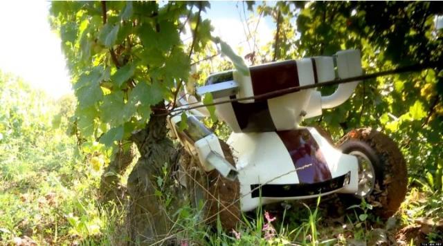Создатели беспилотного КамАЗа займутся разработкой сельскохозяйственных роботов